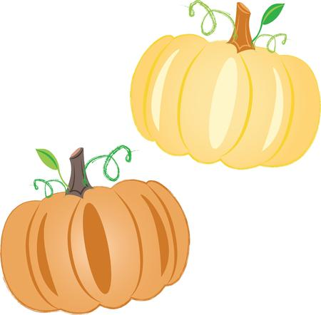 fall harvest: Pumpkins are the perfect fall design.  Use with your Halloween or Thanksgiving decor.