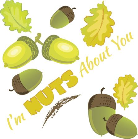 acorn seed: Acorns and leaves are the perfect for a fall theme.  Embroider this design on clothes, towels, pillows, gym bags, quilts, t-shirts, jackets or wall hangings for your fall design! Illustration