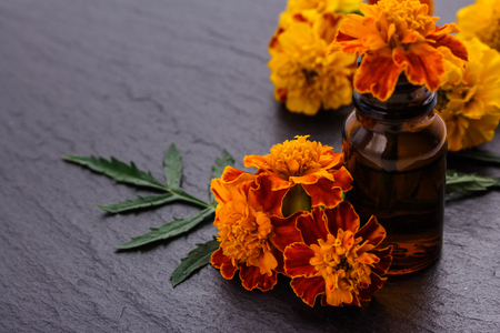 essential oil marigold on a dark stone background. Imagens - 108686260