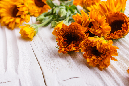 Calendula on a white wooden rustic background.