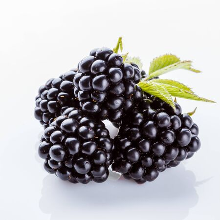 juicy blackberries on a white acrylic background.