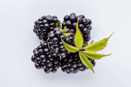 juicy blackberries on a white acrylic background