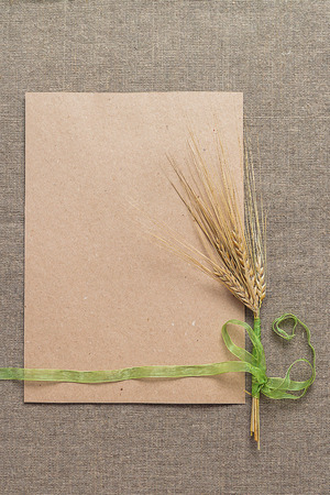 wheat kernel: Empty paper and spikelets tied with green ribbon on sacking