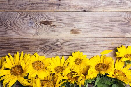 Yellow sunflowers on old wooden background. Copy space. Top view.