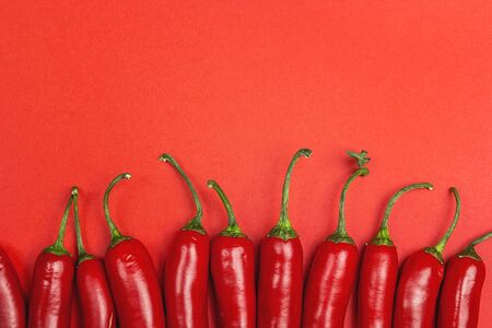 Chilli pepper on a red background with copy space. View from above.