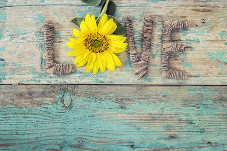 Background with yellow sunflower and the word love on old wooden boards with peeling paint. Space for text.