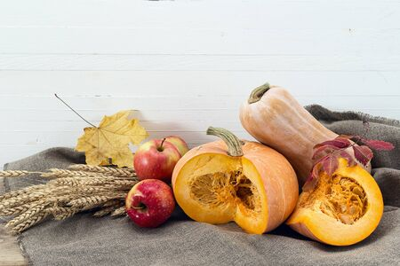 Still life with pumpkins, apples and ears of wheat. White wooden background. Space for text. Happy Thanksgiving background.