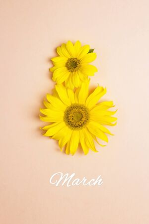 Sunflowers in shape of number 8 on pink pastel background. International Womens Day concept, March 8.