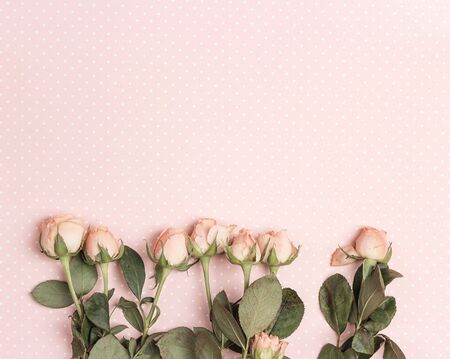 Border of little rose on a pink polka dot background. Place for text. Flat lay, top view. 写真素材