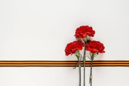 Defender of the Fatherland Day. Red carnations with st george ribbons on the white background. Space for text. Фото со стока