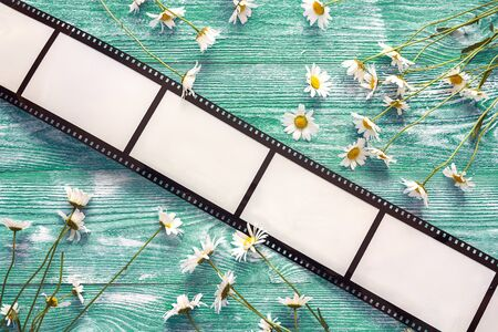 Background with a frame in the form of a film and chamomile flowers on green wooden table. Space for text or image.