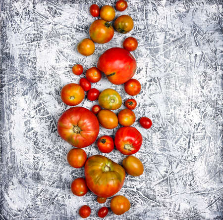 Colorful tomatoes of different sizes on gray background. Top view square image.