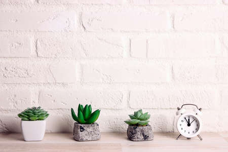 Small succulents in pots with alarm clock on the background of a white brick wall. Copy space for text.