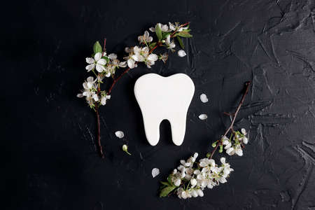 Healthy tooth symbol with apple blossom branches on black background. Dental health, dentistry concept.