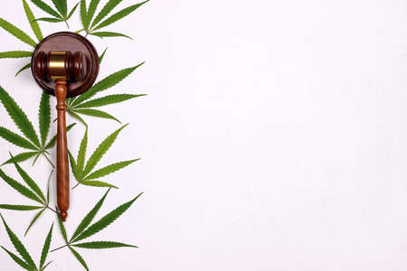 Judge gavel with cannabis leaves on white background. The concept of the prohibition of legalization of marijuana, criminal liability, the legality of medical cannabis. Top view with copy space. Фото со стока