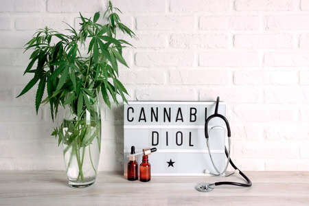 Marijuana plant in a vase with Cannabidiol word on white Lightbox, bottles and stethoscope on a white brick wall. Copy space. Medical hemp. Фото со стока