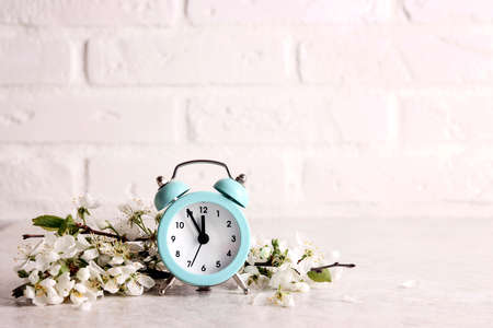 Blue alarm clock with apple blossom branches against the white brick wall. Festive springtime border with copy space.