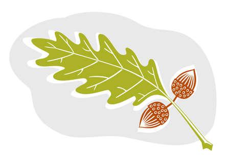 leaf: A sweet acorn and oak leaf design in woodcut style