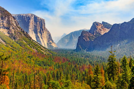 Tunnel View of scenic Yosemite Valley with famous El Capitan, Half Dome rock climbing summits, and and Bridalveil Fall in summer, Yosemite National Park, California, United States of America Stok Fotoğraf