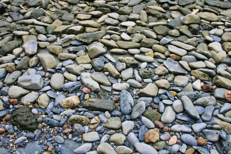 Pebbles as a background image Stock Photo - 13375441