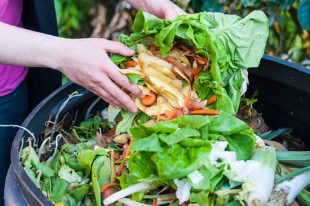 garbage bin: Composting the Kitchen Waste Stock Photo