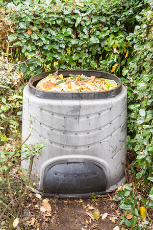 kitchen scraps: Composting the Kitchen Waste in a plastic compost bin