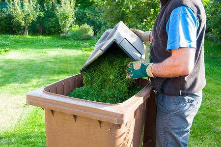 lawn mowing: Lawn mowing in a garden
