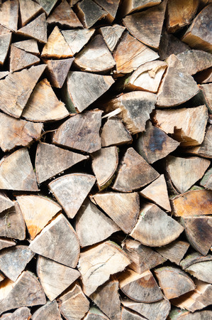 woodshed: Stacked and cut logs