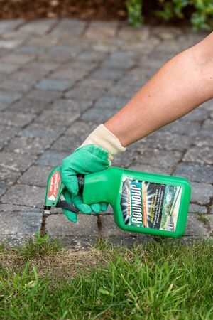 Paris, France - August 15, 2018 : Gardener using Roundup herbicide in a french garden. Roundup is a brand-name of an herbicide containing glyphosate, made by Monsanto Company.