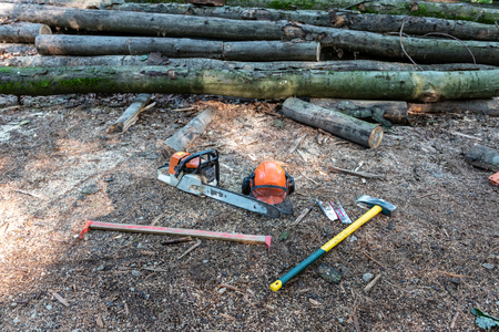 Tools of lumberjack in forest