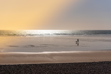 Woman running with her dog on a beach at sunset