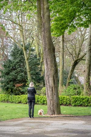 Woman walking her dog in a park Imagens