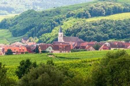 Alsatian village surrounded by vineyards in France