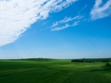 The fields after rain, the blue sky and the white clouds