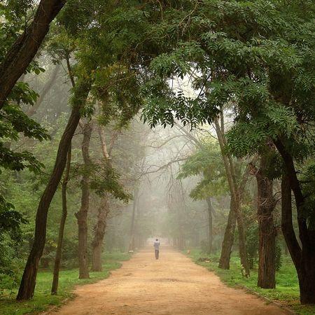 stil zijn: Man in de mist Stockfoto