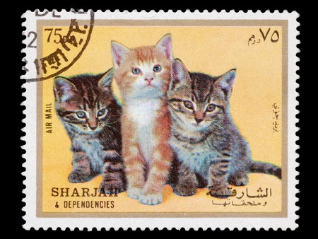 SHARJAH AND DEPENDENCIES, UAE - CIRCA 1972: A stamp printed in Sharjah and Dependencies shows young cats, circa 1972
