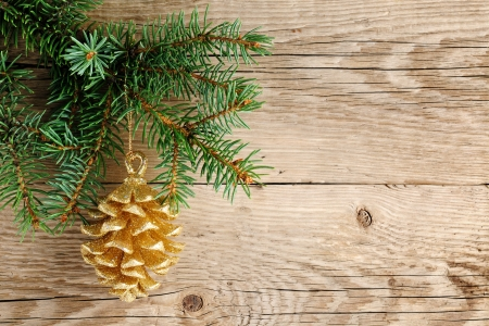 fir cones: Golden pine cone on christmas tree Stock Photo
