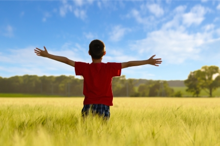 Child enjoying the sun on wheat field photo