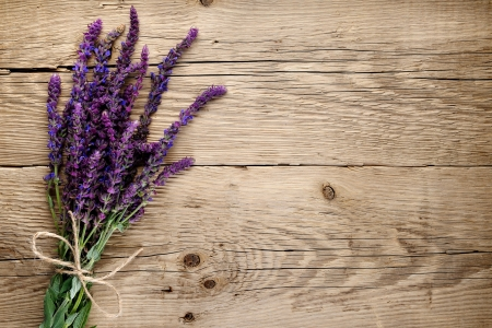 salvia: Bunch of salvia on wooden background