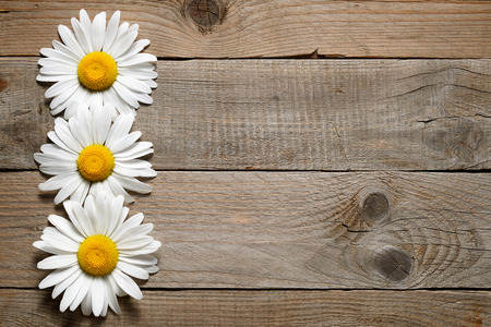 Daisy flowers on wooden background Imagens