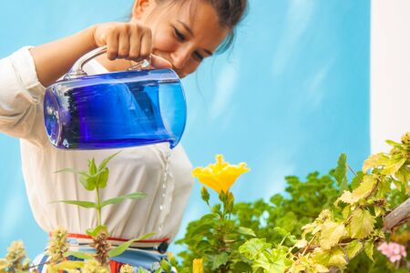 Happy young woman watering plants and yellow flower in pots on blue houes balcony. Fashion white shirt, brunette.