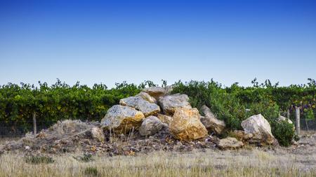 Roches du vignoble Beechworth