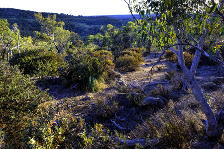 Warby Ranges National Park