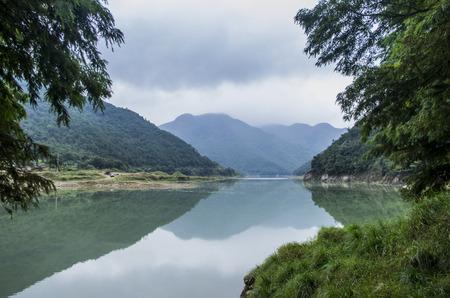tropical rain forest reserve scene