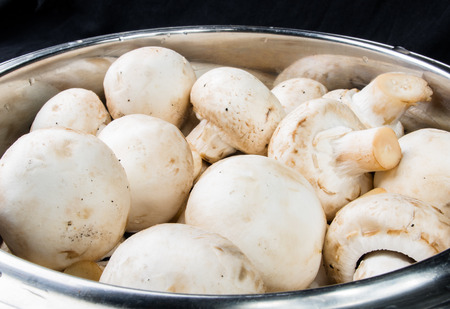 shiny metal background: mushrooms champignons in a shiny metal bowl on black background