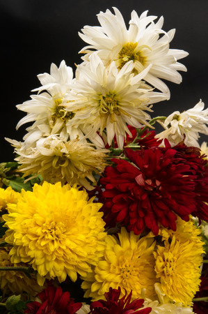 withering: bouquet of colorful autumn flowers Stock Photo