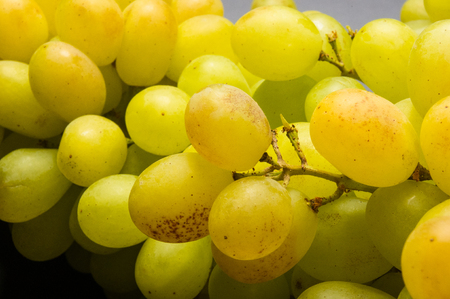 Large grapes cluster