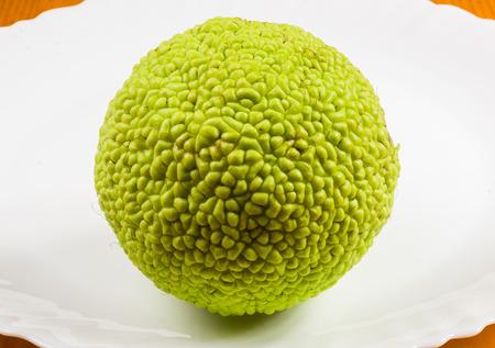 Green fruit of maclura pomifera, osage orange, horse apple, adam apple grow on white wooden table, macro, close up