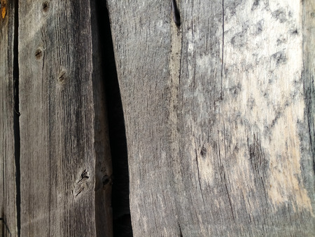 the texture of the painted shabby wooden flooring made of boards, close up, grunge background