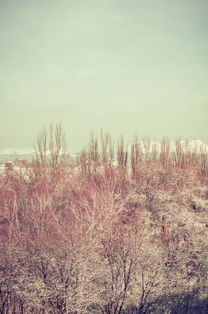 Winter urban landscape - snow covered trees on foggy background Imagens - 133181399